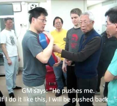 Penetrating Punch - The Basics (Chu Shong Tin Training Episodes #005)