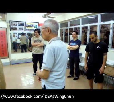 Stepping (in Chum Kiu) and Kicking (Chu Shong Tin Training Episodes #008)