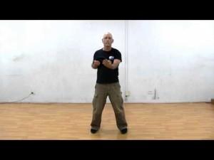 Wing Chun - Biu Jee Form