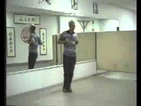 Grandmaster Chu Shong Tin - Wing Chun Empty Hand Form Biu Jee