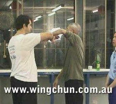 Sigung Chu Shong Tin's Sil Lim Tao #1