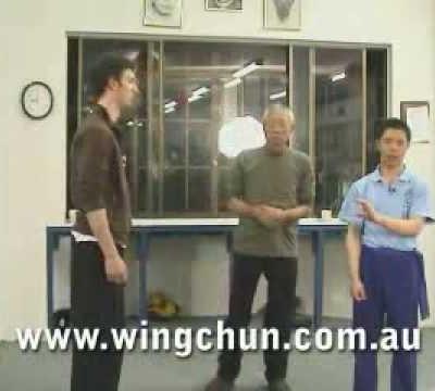 Sigung Chu Shong Tin's Sil Lim Tao #2