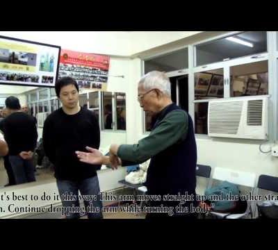 Chu Shong Tin Wing Chun -  Garn Sau demo